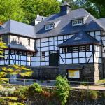 Hotel Pictures: Villa Rur, Monschau