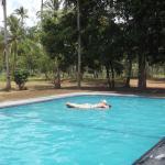 Grove Sri Lanka, Kalpitiya