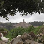Monolocale Borgo Antico, Castelnuovo di Val di Cecina