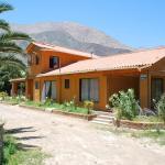 Hotel Pictures: Hostal Luz del Valle, Vicuña