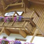 ホテル写真: Paulingerhof, インスブルック