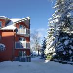 Appartement Brinkmann,  Braunlage