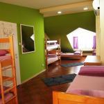 Hedonist Lounge Hostel, Belgrade