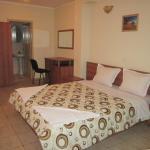 Fotos de l'hotel: Versai Hotel, Svishtov