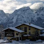 Φωτογραφίες: Hotel Der Mölltaler, Iselsberg