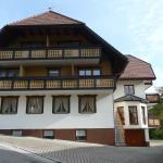 Hotel Pictures: Gästehaus Roseneck, Todtmoos