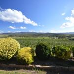 Hotelbilleder: Sancerre Estate, Ballandean