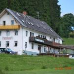 Hotel Pictures: Gasthaus Pension Donishäusle, Titisee-Neustadt