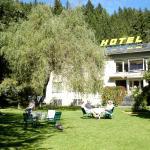 Hotellikuvia: Hotel Garni Lukanz, Neumarkt in Steiermark
