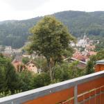 Hotel Pictures: Haus Herzogenhorn, Todtmoos