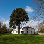 Sandymount House B&B,  Abbeyleix