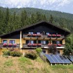 酒店图片: Kamenhof, 魏森湖