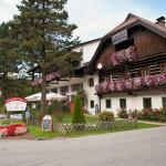 Hotellikuvia: Pension Tischlerwirt, Radenthein