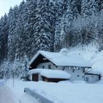 Фотографии отеля: Chalet Snowy Hills, Бихльбах