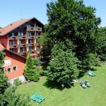 Hotel Pictures: Flair Hotel Vino Vitalis, Bad Füssing