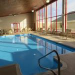 Best Western Plus York Hotel and Conference Center, York