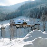 Hotel Pictures: Waldhotel Fehrenbach, Hinterzarten