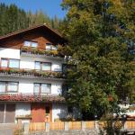 Fotos de l'hotel: Gasthof Trattner Pension Waldhof, Sankt Peter am Kammersberg