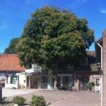 Herberg de Tramhalte, Roosteren
