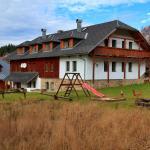 Hotel Pictures: Modrý Penzion, Modrava