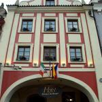 Hotel Pictures: Hotel Zlatý Kohout, Mladá Boleslav