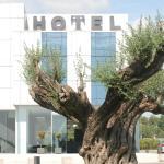 Hotel Pictures: Hotel Duomo, Benifayó