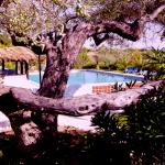 The Sea Garden Hotel & Resort, LAmpolla