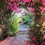 Aloe & Lotus Villas,  Prinés