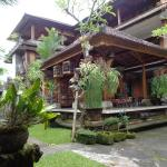Mawar Homestay, Ubud