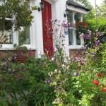 Woodbine Guest Accommodation, Exeter