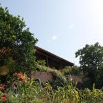 Hotel Pictures: Casa Rural Las Rosas, Agulo