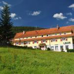 Hotel Pictures: Gasthof Berghof, Enzklösterle