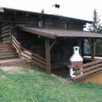 Hotellbilder: Hütte - Ferienhaus Bischoferhütte für 4-10 Personen, Alpbach