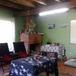 Hotel Pictures: Buchu's HostalPizza, Buchupureo