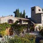 Nittardi,  Castellina in Chianti