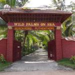Wild Palms on Sea, Kazhakuttam