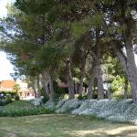 Hotel Pictures: Casa Rural Cal Dalfó, Almenar