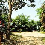 Heuandok - Euang,  Chiang Rai