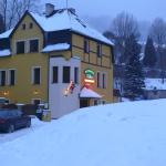 Hotel Pictures: Pension Robin, Jáchymov