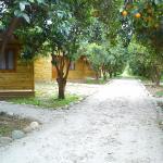 Yesil Bahce Bungalow - Ahsap Evler, Fethiye