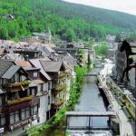 Hotel Pictures: Hotel-Restaurant Sonne, Bad Wildbad