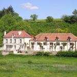 Hotel Pictures: Manoir Bonpassage, Thury