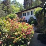 B&B Il Giardino delle Cince, Borgo Ticino