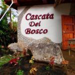 Hotel Pictures: Cascata Del Bosco Cabinas, San Vito