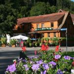 Hotel Pictures: Grüner Hof, Zell am Harmersbach
