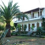 Villa Alexandra, Roda