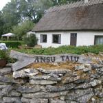 Ansu Guest House,  Järveküla