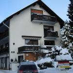 Hotel Pictures: Claudias Wohlfühlpension, Willingen