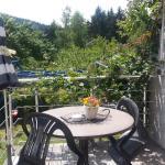 Hotel Pictures: Ferienwohnung Steinbacher, Amtsberg