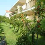 Bed and Breakfast Cirelli, Scalea